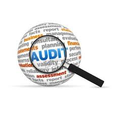 How to get Ready for or Avoid Software Audits