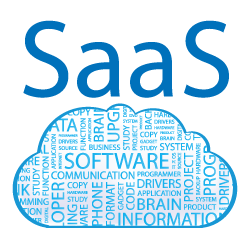 Software asset management maturity in the age of SaaS