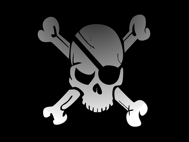 Victorian Businesses the Biggest Software Pirates in Australia