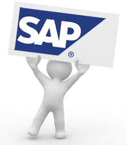 SAP Self-Declaration: Annoyance or Opportunity?