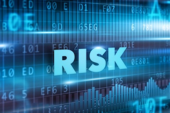 Risk Appetite for a Software Audit!