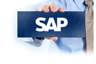 SAP indirect access explained