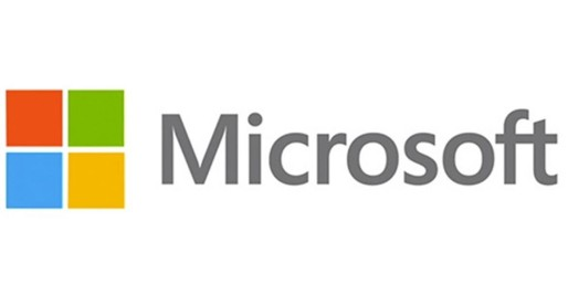 Microsoft Review V Audit