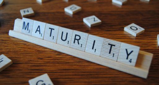Understanding your SAM Maturity Level