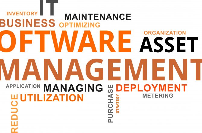Demystifying software asset management
