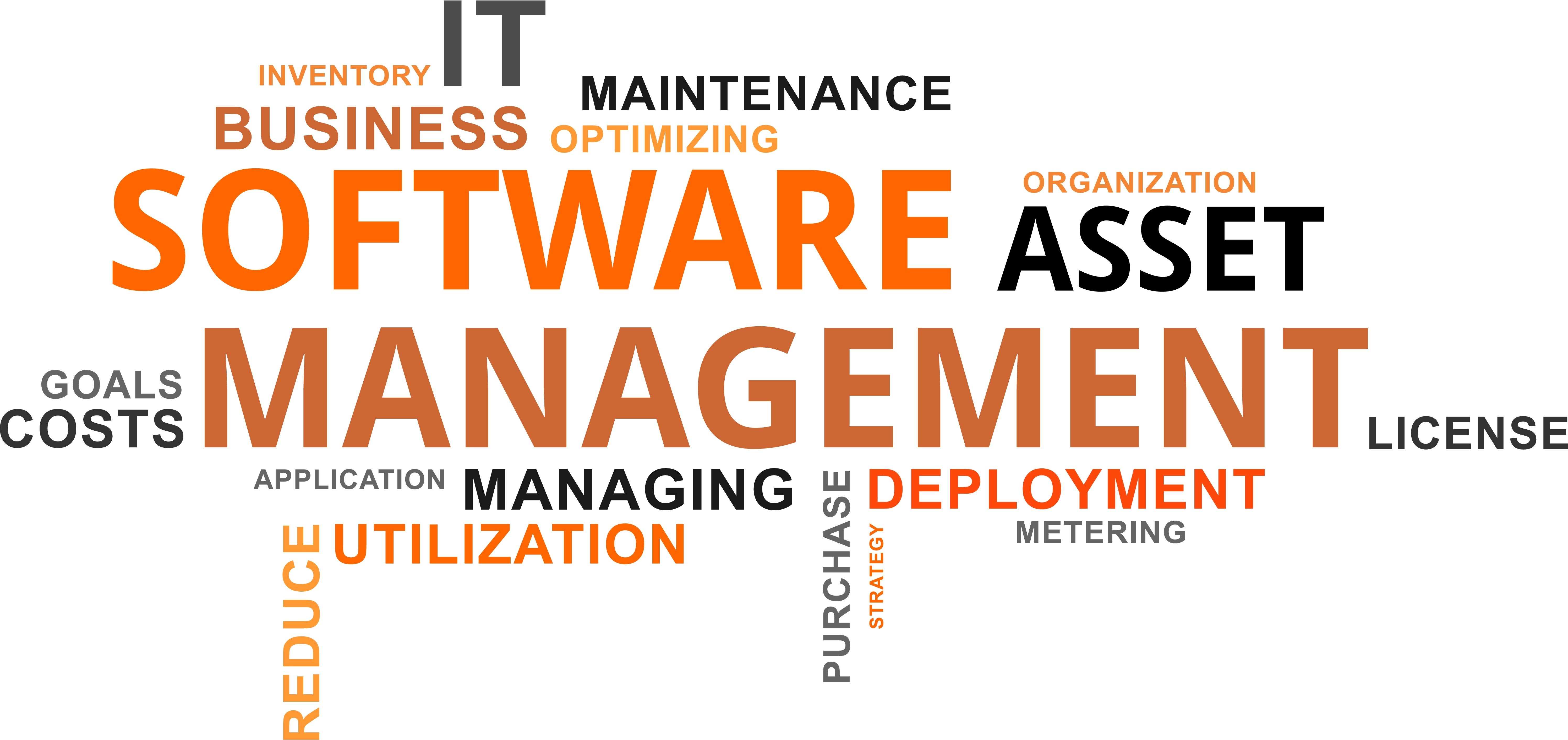 Autopsy of an off-the-shelf software acquisition process: from demand to installation. A nightmare for your IT department?